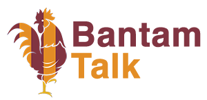 Bantam Talk - Bradford City Forum